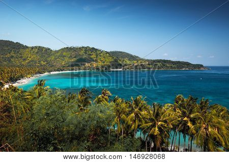 View of the bay and coast with tropical trees from the hill