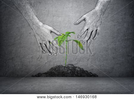 Hands of a man touching green plant in a soil on a concrete background. Ecology and environment. Greenpeace. Save the planet. Vegetarianism.