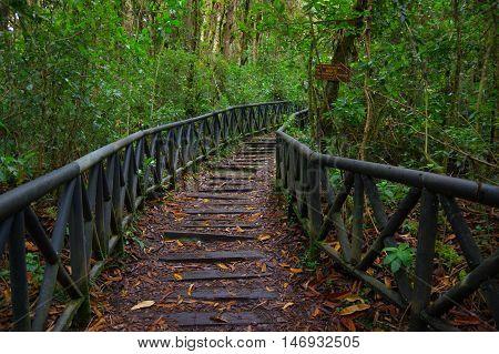 PASTO, COLOMBIA - JULY 3, 2016: nice wood path located in la cotora island in the middle of la cocha lake.