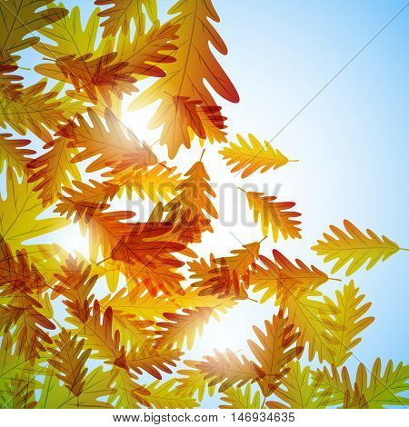 Illustration autumn still life. Oak leaves. Vector background