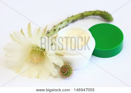 Face and body cream decorated with tender cactus flower and the same kind of rough cactus plant on white
