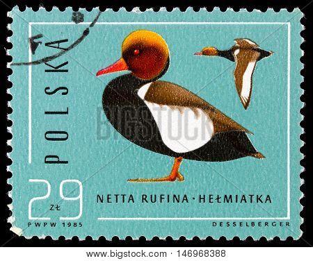 Republic Of Poland - Circa 1985