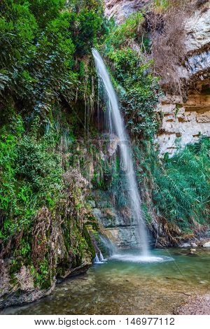 Ein-Gedi - the reserve and national park of Israel. The magnificent falls Shulamit fall in a shallow pond with emerald water.