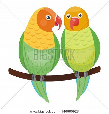 Cartoon parrots couple set and parrots wild animal birds. Tropical parrots feather zoo birds, tropical fauna macaw flying ara. Various cartoon exotic birds set with parrots vector illustration.