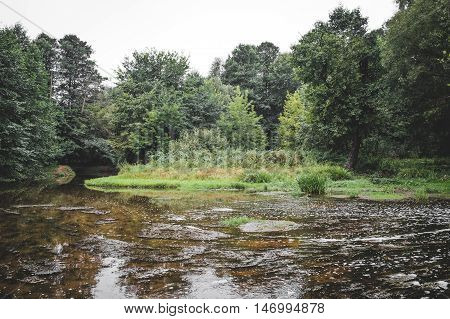 river in the forest. Amazing water flow torrents through a autumn forest