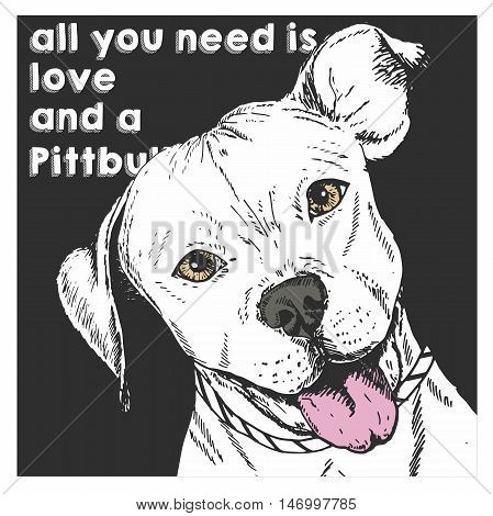 Vector close up portrait of english pit bull isolated on black square background. All you need is love and a dog. Hand drawn domestic dog illustration. Sketched engraved funny illustration.