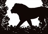 Lion in Isolated bush or jungle frame Vector (EPS) poster