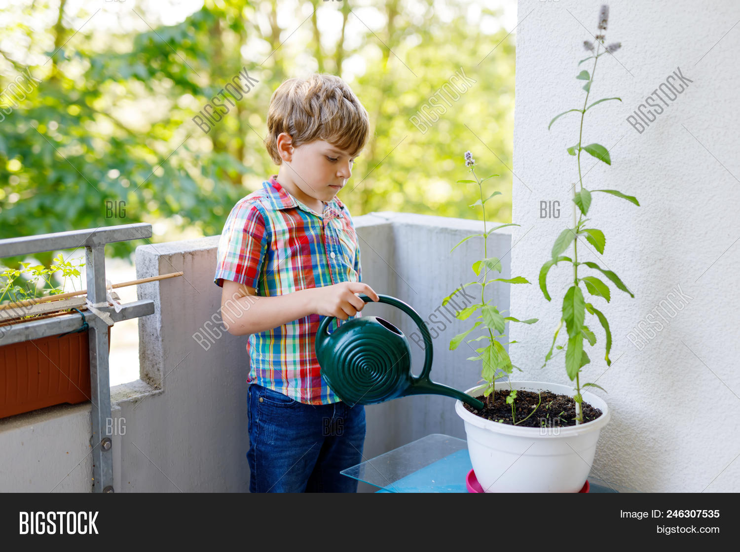 Active Little Preschool Kid Boy Watering Plants With Water Can At Home On Balcony