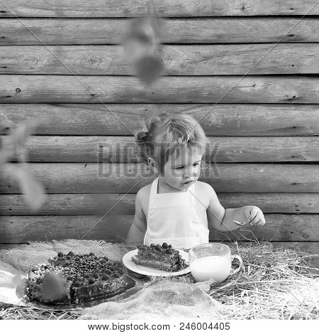 Child Is Eating A Cake. Cute Little Boy In White Pinafore Eats Fruit Cake And Cup Of Milk At Table O