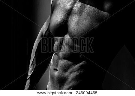 Trained Male Body. Muscular Torso Of Sexy Young Male Bodybuilder Power Athletic Man With Perfect Mus