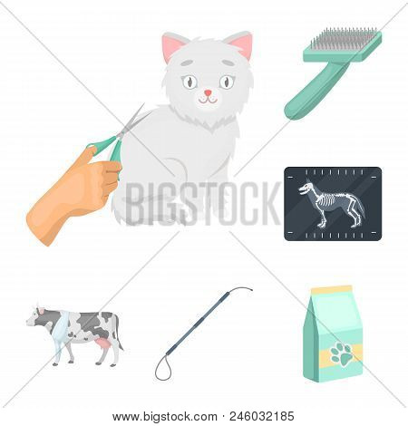 Veterinary Clinic Cartoon Icons In Set Collection For Design. Treatment Of A Pet Vector Symbol Stock