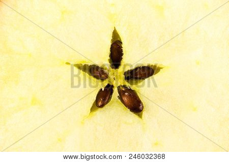 Profile Of Fresh Organic Apple With Seeds Isolated On White Background