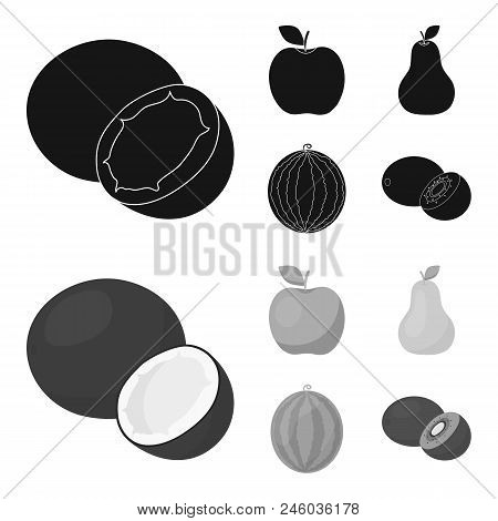 Coconut, Apple, Pear, Watermelon.fruits Set Collection Icons In Black, Monochrome Style Vector Symbo