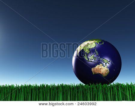 Australasien auf Gras