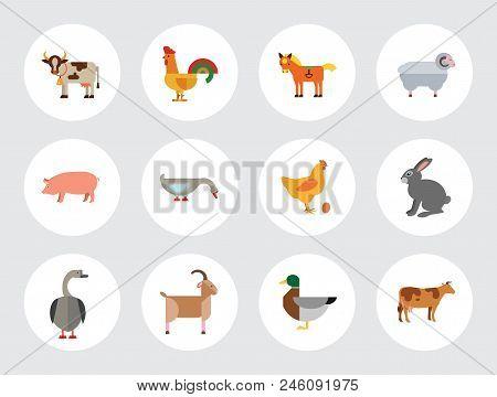 Farm Animal Icon Set. Cow Hen And Egg Turkey Goose Cockerel Duck Goat Pecking Goose Ram Pig Horse Ra