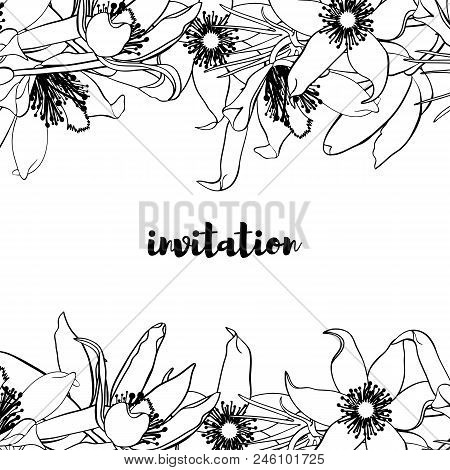 Hand Drawn Vintage Floral Card. Black And White. Stock Vector Illustration.