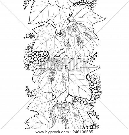 Vector Seamless Pattern With Outline Black Abutilon Or Indian Mallow Flower And Leaf On The White Ba