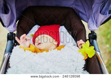 1 Month Old Baby Girl Sleeping In Perambulator And Holding Flower In Her Hand