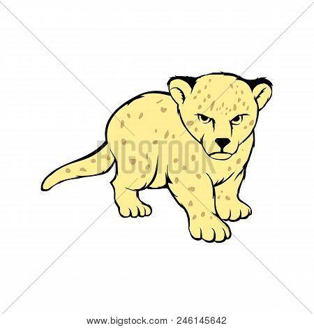 Cartoon Tigers. Vector Tiger Cub. Tigers Vector Illustration