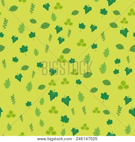 Seamless Pattern With Tropical Tree Leaves. Vector.