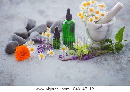 aromatherapy oil with fresh herbs and flowers - alternative medicine