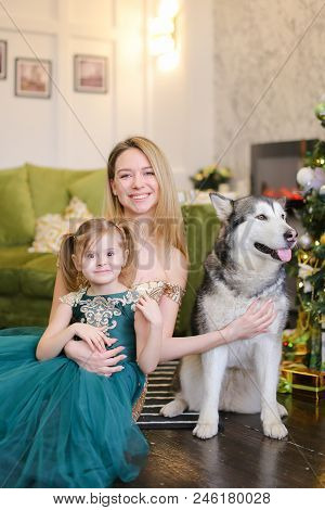 Young Gorgeous Mother With Litle Daughter And Husky Sitting Near Near Christmas Tree. Concept Of Cel