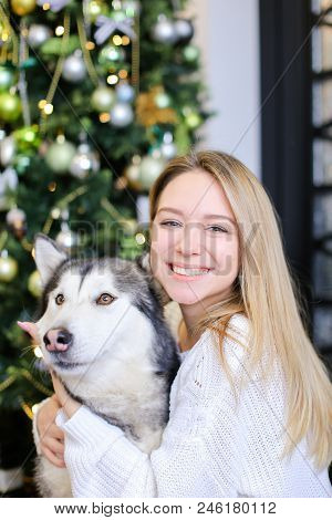 Portrait Of Smiling Girl With Husky, Decorated Fir Tree In Background.concept Of Celebrating Christm