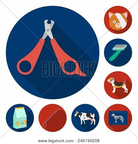 Veterinary Clinic Flat Icons In Set Collection For Design. Treatment Of A Pet Vector Symbol Stock  I