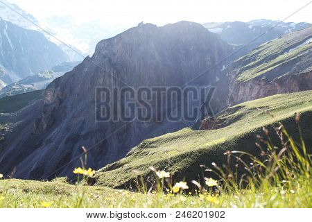 Yellow Flowers And Grass In The Foreground Against The Hills Of Mountains And Rocks, Kabardino-balka