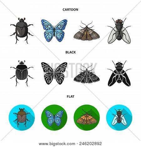 Wrecker, Parasite, Nature, Butterfly .insects Set Collection Icons In Cartoon, Black, Flat Style Vec