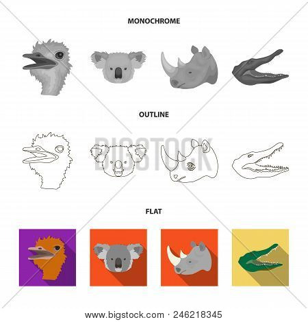 Ostrich, Koala, Rhinoceros, Crocodile, Realistic Animals Set Collection Icons In Flat, Outline, Mono