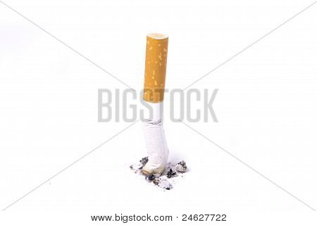 Single Cigarette Butt With Ash