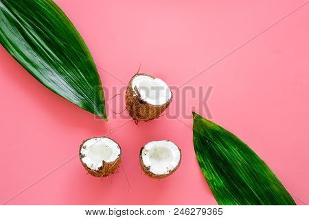 Tropical Composition With Coconut. Whole Coconuts And Coconut Cut In Half Near Pulm Leaves On Pink B