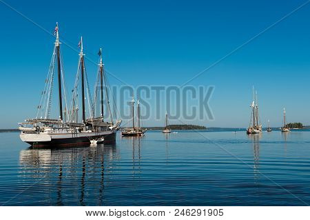 Wooden Boats Gather At Boat Festival - Annual Gathering Of Historic Wooden Boats In Maine, Usa