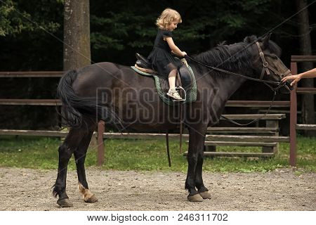 Equine therapy, recreation concept. Girl ride on horse on summer day. Child sit in rider saddle on animal back. Friend, companion, friendship. Equine therapy, recreation concept. Sport, activity, entertainment. riding school poster