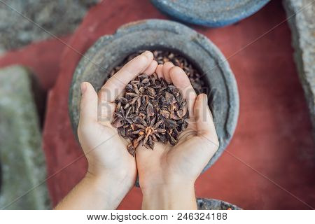 Badyan, Anise In Female Hands Against The Backdrop Of Spices.