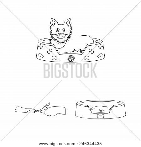 Pet Outline Icons In Set Collection For Design. Care And Education Vector Symbol Stock  Illustration
