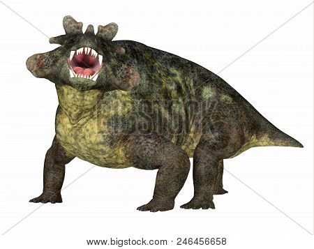 Estemmenosuchus Mirabilis Dinosaur Side Profile 3d Illustration - Estemmenosuchus Mirabilis Was An O