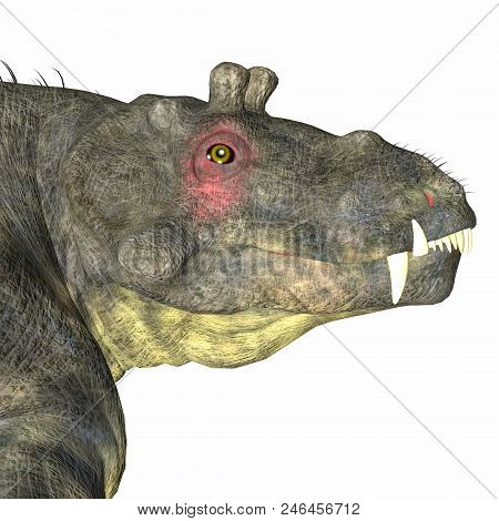 Estemmenosuchus Uralensis Dinosaur Head 3d Illustration - Estemmenosuchus Uralensis Was An Omnivorou