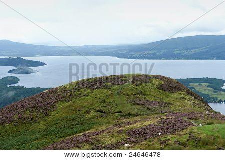 Panoramic View Around Loch Lomond