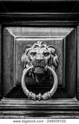 Caller Shaped Golden Lion, Detail Of An Ancient Decorated Door, Ancient Art