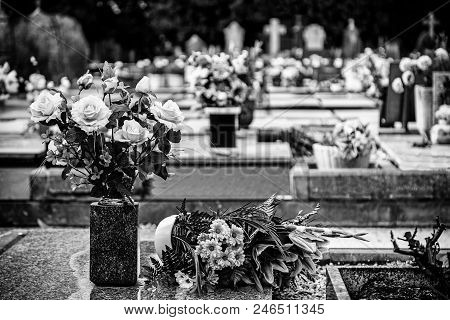 Flowers In A Cemetery, Dead And Pace