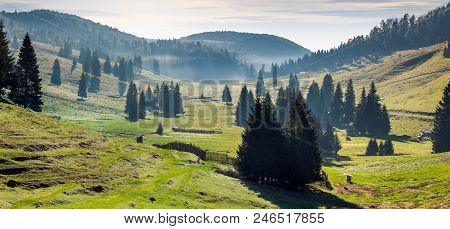 Panorama Of Balileasa Valley Of Apuseni Mountains. Gorgeous Autumn Sunrise With Glowing Fog Among Th