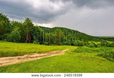 Country Road Down The Hill Through The Forest. Lovely Countryside Scenery In Mountainous Area Before