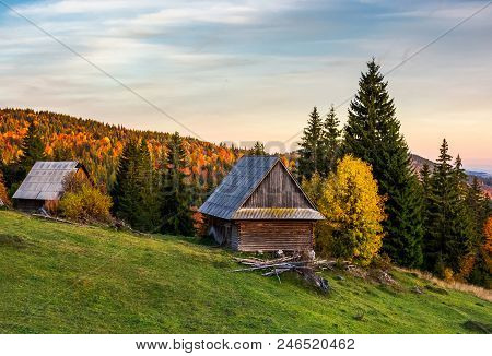 Abandoned Woodshed In Forest. Beautiful Autumn Landscape Of Apuseni Mountains. Lovely Nature Scenery