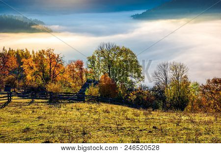 Autumn Countryside With Valley Full Of Thick Fog. Gorgeous Scenery At Sunrise In Mountainous Area. V