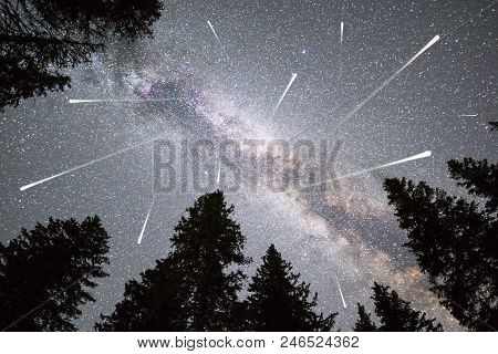 A View Of A Meteor Shower And The Milky Way With A Pine Trees Forest Silhouette In The Foreground. N