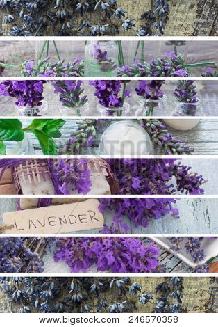 fresh lavander cosmetics, fresh as flowers