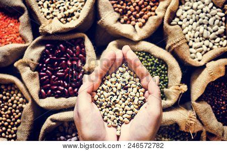 Various of legumes