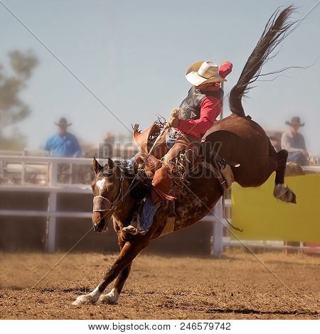 A Cowboy Rides A Bucking Horse In Saddle Bronc Event At A Country Rodeo